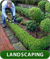 Greenwood Landscaping Naperville Landscaping Company